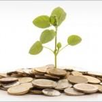 coins-grow-plant